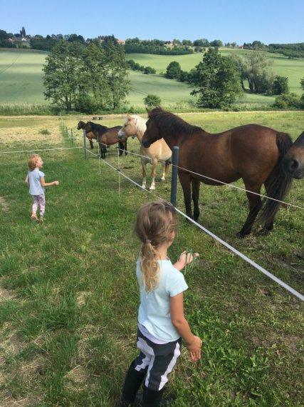 Holčičky na pastvě krmí koně