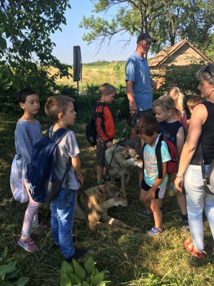 Děti se seznamují s pánem a jeho psy